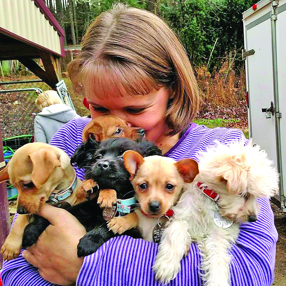 Melisa-Gentry-with-puppies